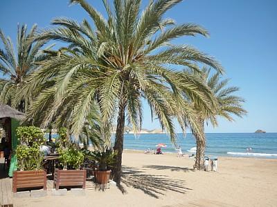 la playa en San Juan de los Terreros