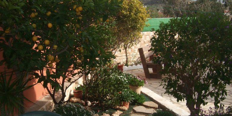 Terrassen 1