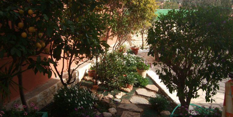Terrassen 6